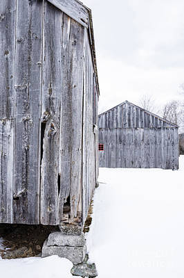 Photograph - Old New England Barns Winter by Edward Fielding