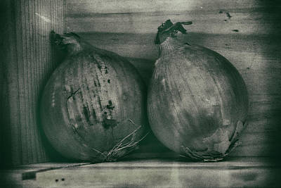 Photograph - Old Onions by David Hare