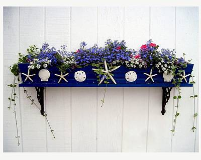Photograph - Old Orchard Flower Box by Patricia E Sundik