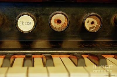 Photograph - Old Organ Keys by David Arment