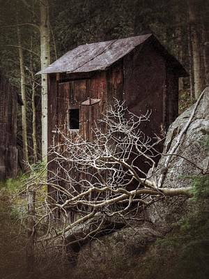 Old Outhouse - St. Elmo Print by LeAnne Perry