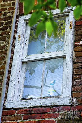 Photograph - Old Paint by Dale Powell