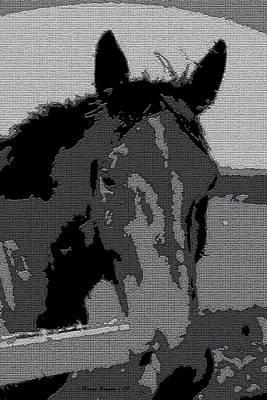 Grey Horse Digital Art - Old Paint by Wayne Bonney