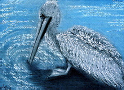 Pastel - Old Pelican by Jan Amiss