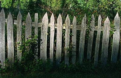 Photograph - Old Picket Fence by Rodney Lee Williams