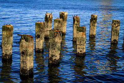 San Francisco Bay Photograph - Old Pier Pillars 2 by Bonnie Follett