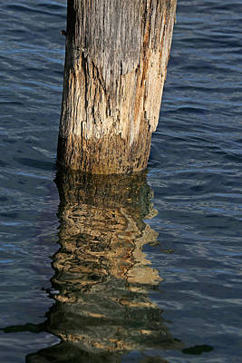Photograph - Old Piling And Reflection 1 by Mary Bedy