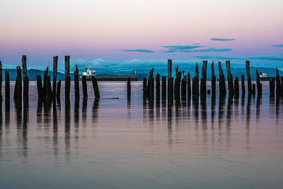 Photograph - Old Pilings Along The Riverwalk by Robert Potts