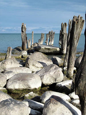 Photograph - Old Pilings And Rocks 012518 by Mary Bedy