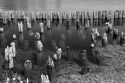 Photograph - Old Pilings Fayette State Park 2 Bw by Mary Bedy