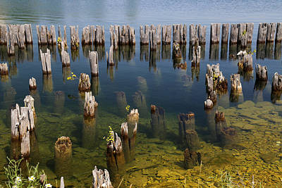 Photograph - Old Pilings Fayette State Park 2 by Mary Bedy