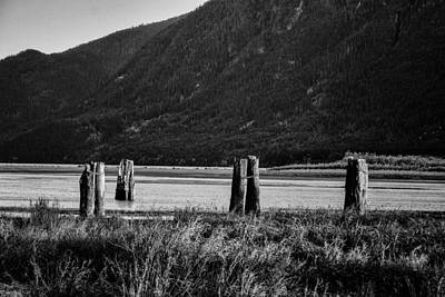 Photograph - Old Pilings by John McArthur