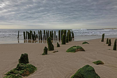 Abstract Works - Old Pilings by Steve Gravano