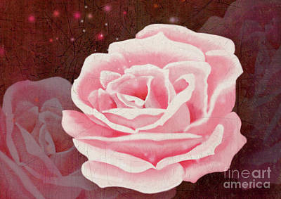 Digital Art - Old Pink Rose by Mariella Wassing