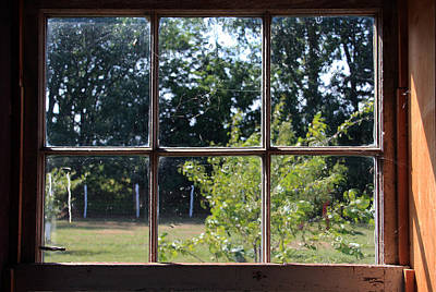 Art Print featuring the photograph Old Pitted Glass Window by Joanne Coyle