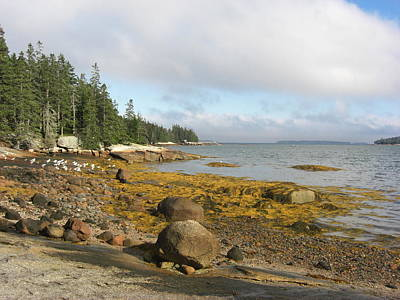 Photograph - Old Quarry Beach, Stonington, Me by Barbara Smith-Baker