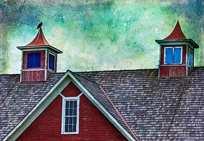 Photograph - Old Red Barn Roof With Vulture by Anna Louise