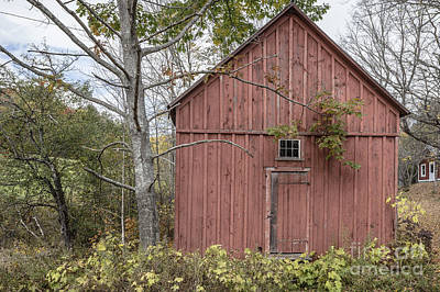 Old Wood Building Photograph - Old Red Shack by Edward Fielding