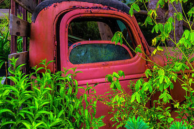 Photograph - Old Red Truck In The Garden by Garry Gay