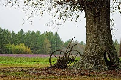 Photograph - Old Relic And Oak by Jan Amiss Photography