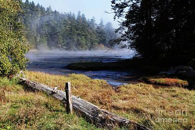 Grateful Dead - Old River Scene by Sue Harper