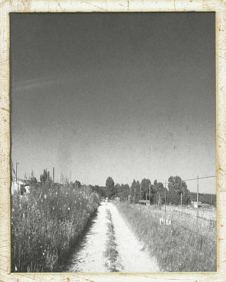 Photograph - Old Road, Old Time by Carolina Liechtenstein