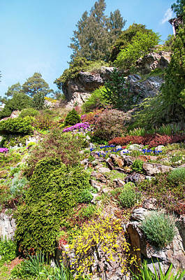 Photograph - Old Rock Alpine Garden At Pruhonice Park 1 by Jenny Rainbow