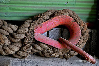 Photograph - Old Rope And Shackle by Nareeta Martin