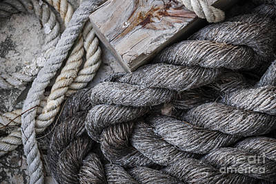 Photograph - Old Ropes On Dock by Elena Elisseeva