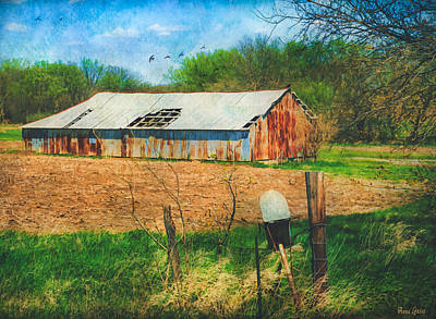 Digital Art - Old Rusty Tin Barn And Mailbox by Anna Louise