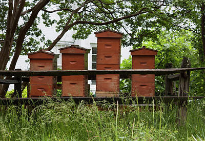 Photograph - Old Salem Bee Hives - Winston Salem Series by Suzanne Gaff
