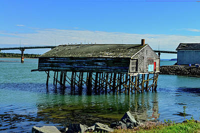 Photograph - Old Sardine Shack In Lubec, Maine by Marilyn Burton