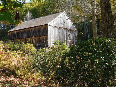Photograph - Old Saw Mill by Catherine Gagne