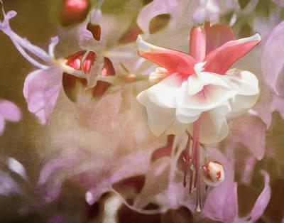 Fushia Photograph - Old School Fuchsia by Hal Halli