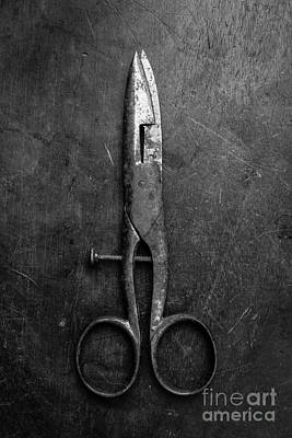 Quilting Photograph - Old Scissors by Edward Fielding