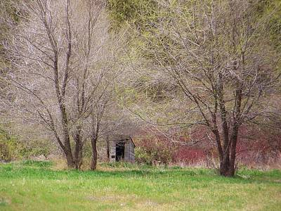 Photograph - Old Shack In The Woods by Angi Parks