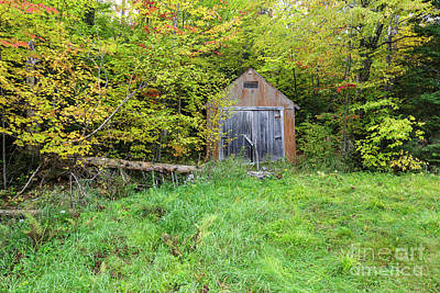 Photograph - Old Shed - Carroll, New Hampshire by Erin Paul Donovan