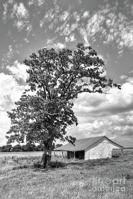 Photograph - Old Shed In Richmond Texas by Savannah Gibbs