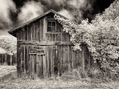 Art Print featuring the photograph Old Shed In Sepia by Greg Nyquist