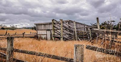 Photograph - Disused Sheep Yard by Lexa Harpell