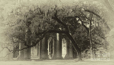 Photograph - Old Sheldon Church Historic Site by Dale Powell