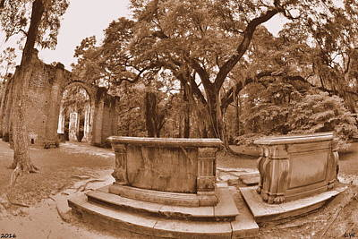 Photograph - Old Sheldon Church Ruins Beaufort Sc Sepia by Lisa Wooten