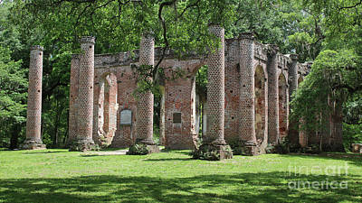 Civil War Site Photograph - Old Sheldon Church Ruins In Sunlight by Carol Groenen