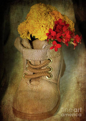 Photograph - Old Shoe by Dorothy Lee