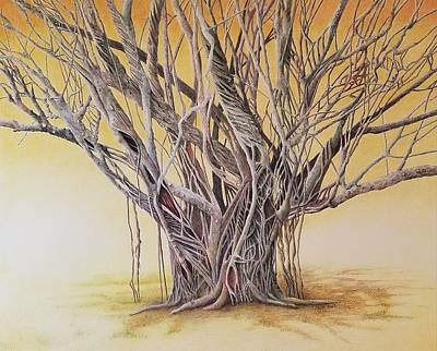 Drawing - Old Soul by Lynne Renzenberger
