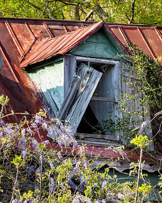 Photograph - Old South Window #3 by Denise Bush