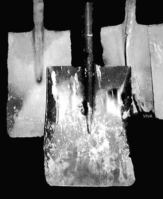 Photograph - Old Spades - B / W by VIVA Anderson