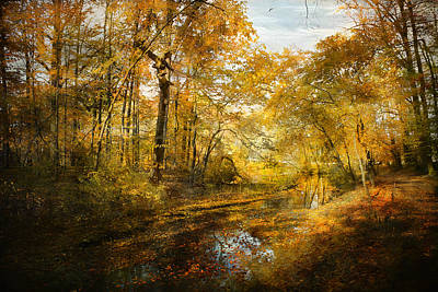 Art Print featuring the photograph Old Stream by John Rivera