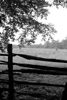 Old Sturbridge Fence In Black And White Art Print by Belinda Dodd