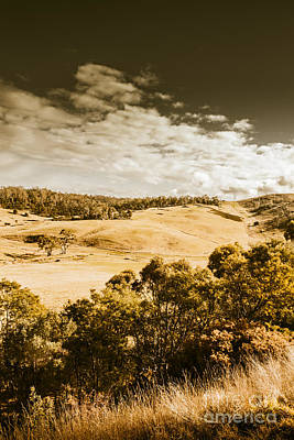 Photograph - Old Summer Hills by Jorgo Photography - Wall Art Gallery